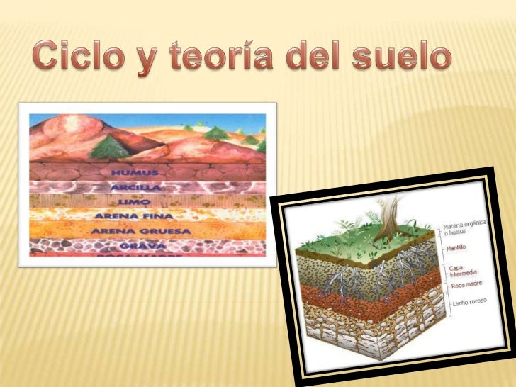 Ciclo del suelo for Formacion de los suelos