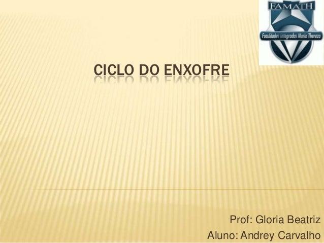 CICLO DO ENXOFRE                 Prof: Gloria Beatriz             Aluno: Andrey Carvalho