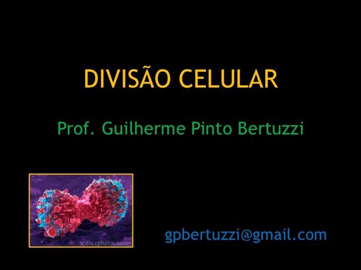 DIVISÃO CELULARProf. Guilherme Pinto Bertuzzi             gpbertuzzi@gmail.com