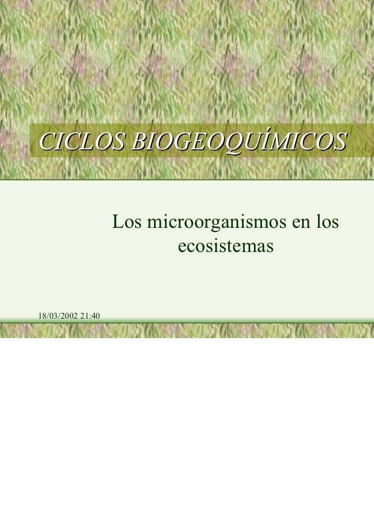 CICLOS BIOGEOQUÍMICOS                   Los microorganismos en los                          ecosistemas18/03/2002 21:40   ...