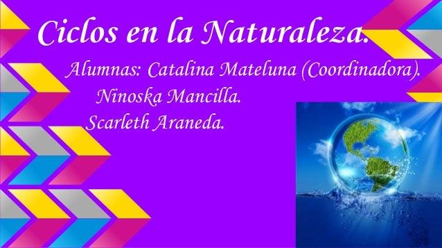 Ciclos en la Naturaleza. Alumnas: Catalina Mateluna (Coordinadora). Ninoska Mancilla. Scarleth Araneda.