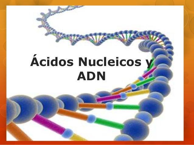Ácidos Nucleicos y ADN
