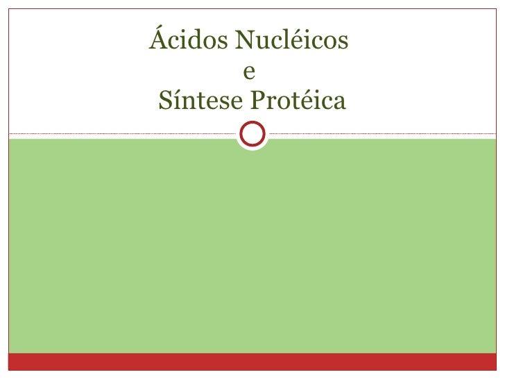 Ácidos Nucléicos  e  Síntese Protéica
