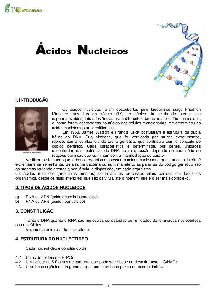 Ácidos NucleicosI. INTRODUÇÃO                          Os ácidos nucleicos foram descobertos pelo bioquímico suíço Friedri...
