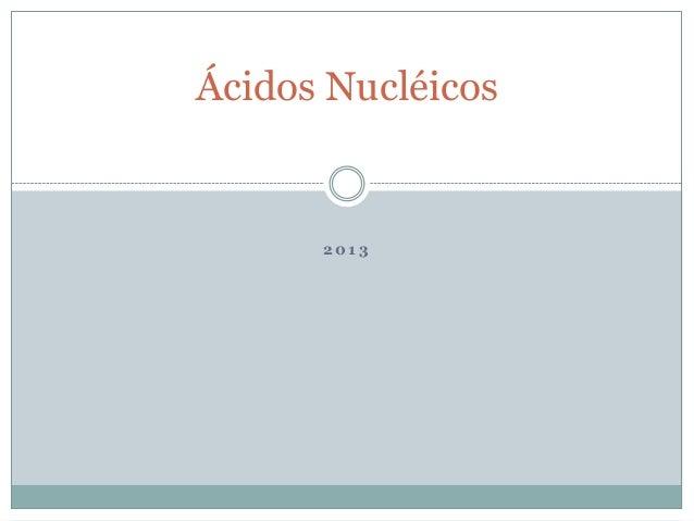 2 0 1 3Ácidos Nucléicos