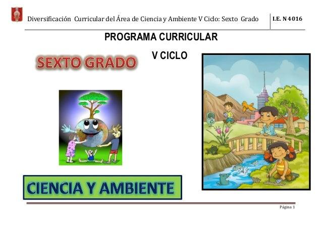 Diversificación Curricular del Área de Ciencia y Ambiente V Ciclo: Sexto Grado I.E. N 4016 Página 1 PROGRAMA CURRICULAR V ...