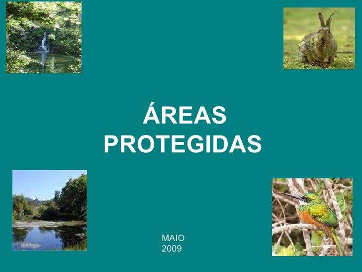 ÁREAS PROTEGIDAS   MAIO 2009