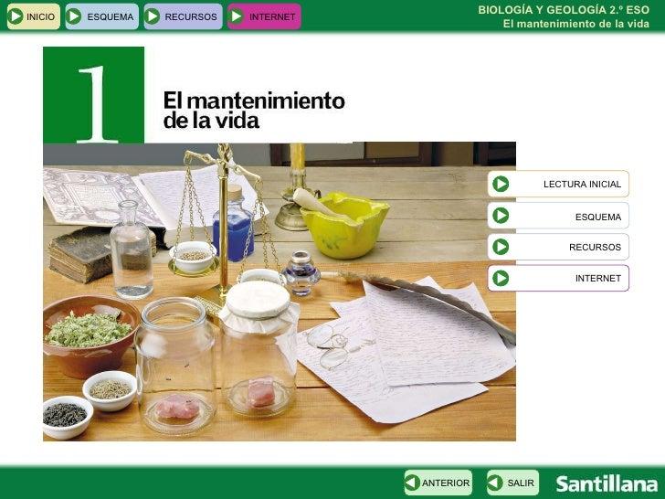 INICIO ESQUEMA RECURSOS INTERNET LECTURA INICIAL ESQUEMA RECURSOS INTERNET SALIR ANTERIOR