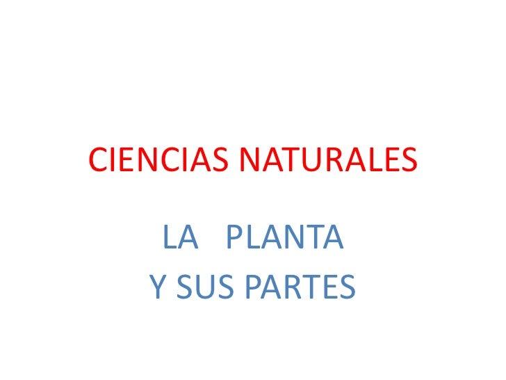 CIENCIAS NATURALES    LA PLANTA   Y SUS PARTES