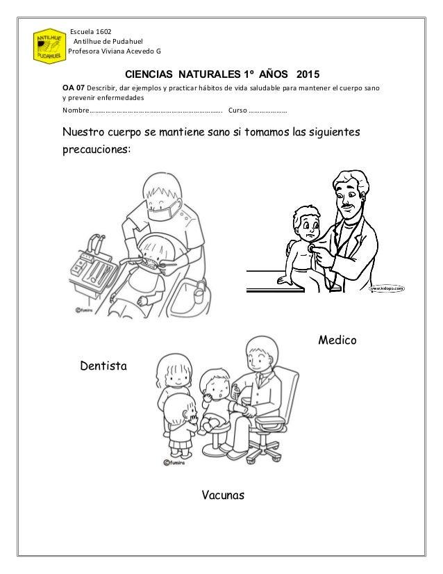 Escuela 1602 Antilhue de Pudahuel Profesora Viviana Acevedo G CIENCIAS NATURALES 1º AÑOS 2015 OA 07 Describir, dar ejemplo...