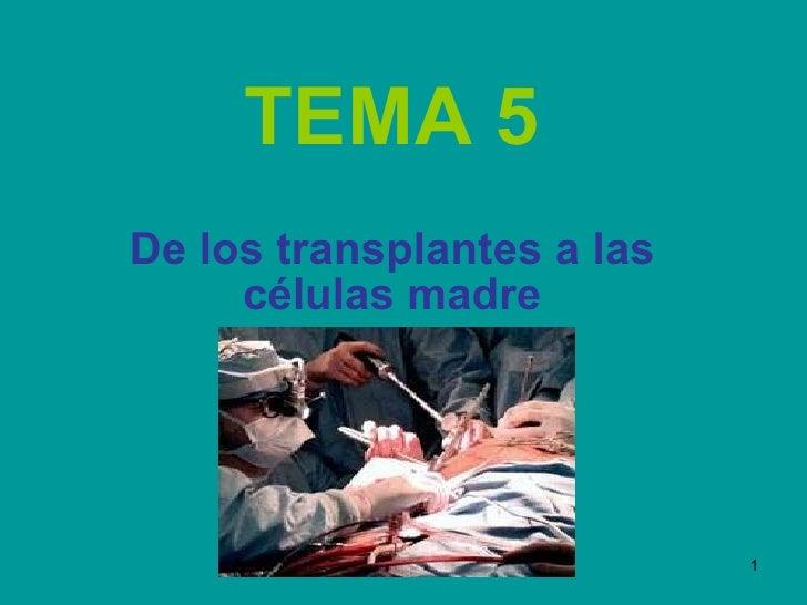 TEMA 5 De los transplantes a las células madre
