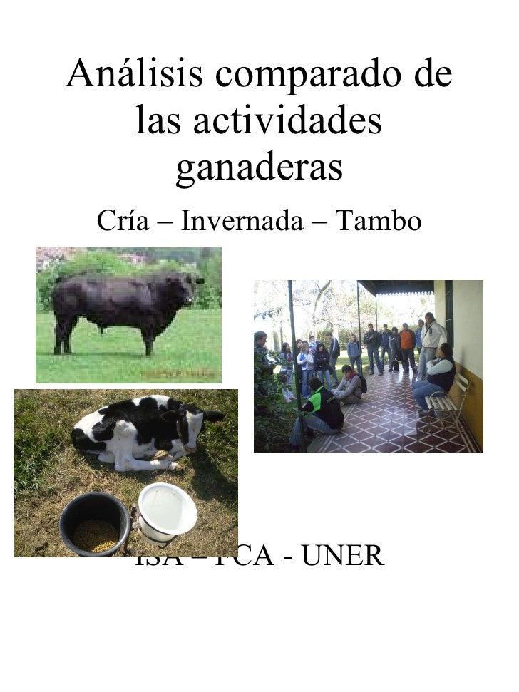 Análisis comparado de las actividades ganaderas <ul><li>Cría – Invernada – Tambo </li></ul><ul><li>ISA – FCA - UNER </li><...