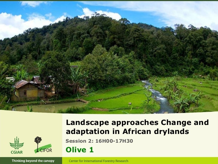 <ul><li>Landscape approaches Change and adaptation in African drylands </li></ul>Session 2: 16H00-17H30  Olive 1