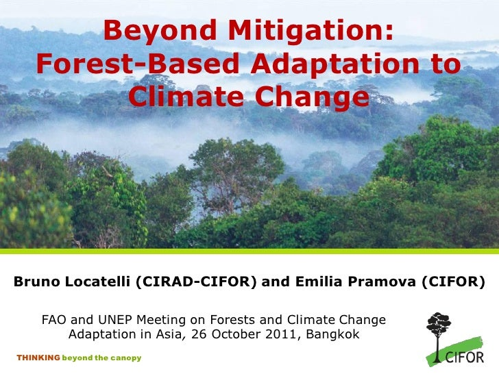 Beyond mitigation: forest-based adaptation to climate change