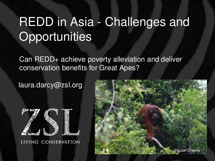 REDD in Asia - Challenges andOpportunitiesCan REDD+ achieve poverty alleviation and deliverconservation benefits for Great...
