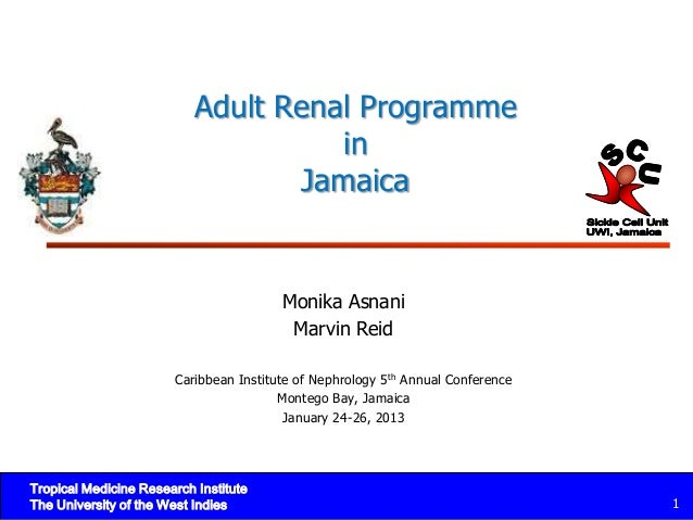 Adult Renal Programme                                     in                                  Jamaica                     ...