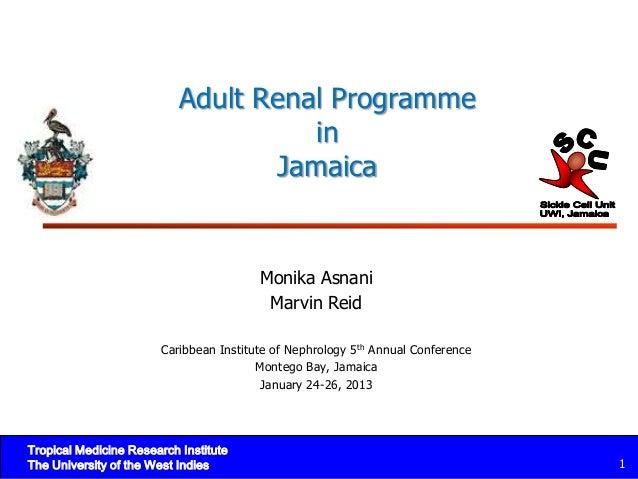 Cin 2013 adult renal programme jamaica