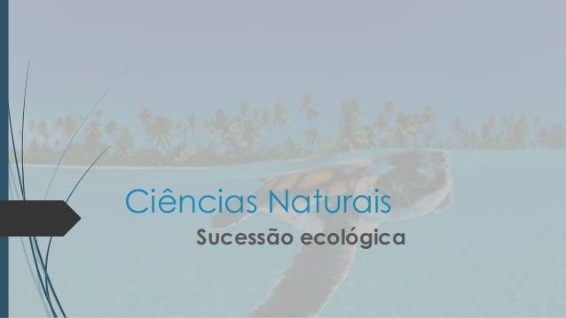 Ciências naturais    sucessão ecológica