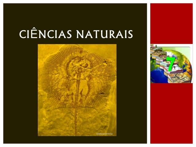 Ciências naturais 7   história da terra - o que dizem os fósseis - parte iii