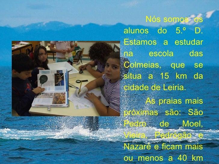Nós somos  os alunos do 5.º D. Estamos a estudar na escola das Colmeias, que se situa a 15 km da cidade de Leiria.  As pra...