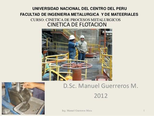 CINETICA DE FLOTACION D.Sc. Manuel Guerreros M. 2012 Ing. Manuel Guerreros Meza 1 UNIVERSIDAD NACIONAL DEL CENTRO DEL PERU...