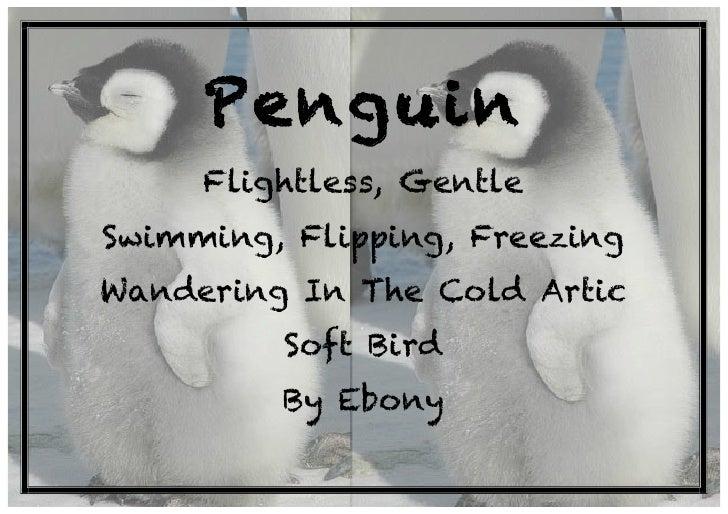 Zoo Cinquain Poems