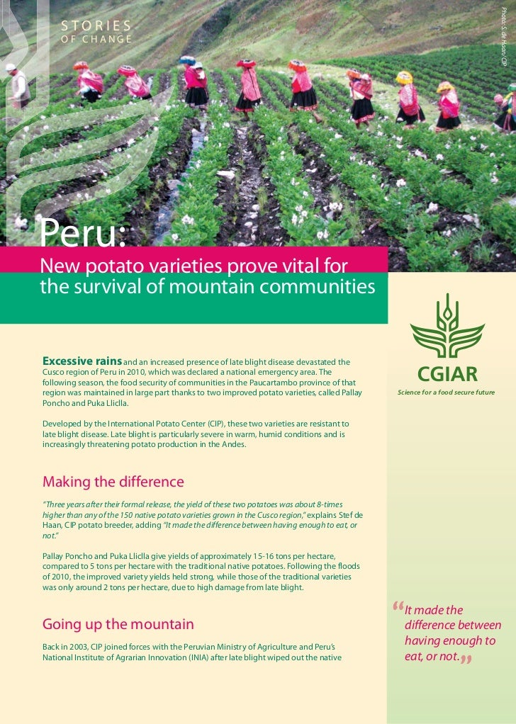 Peru: New potato varieties prove vital for the survival of mountain communities. CIP