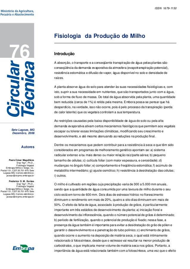 Sete Lagoas, MG Dezembro, 2006 76 ISSN 1679-1150 Autores Introdução A absorção, o transporte e a conseqüente transpiração ...