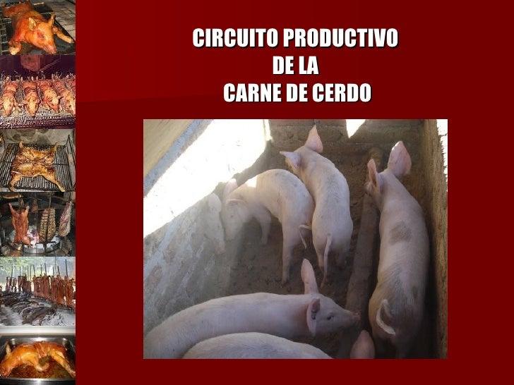 CIRCUITO PRODUCTIVO  DE LA  CARNE DE CERDO