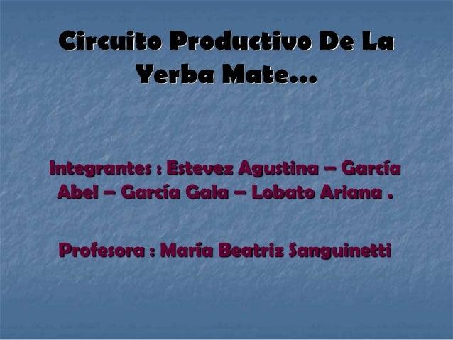 Circuito Productivo De La       Yerba Mate…Integrantes : Estevez Agustina – García Abel – García Gala – Lobato Ariana . Pr...