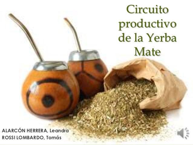 Circuito Productivo : Circuito productivo de la yerba mate alarcon y rossi