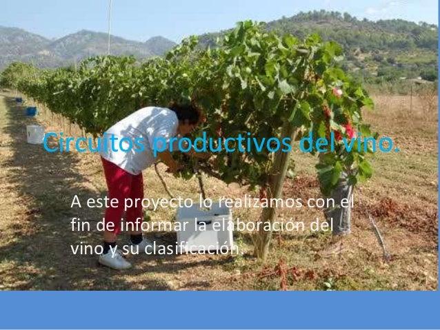 Circuitos productivos del vino.  A este proyecto lo realizamos con el  fin de informar la elaboración del  vino y su clasi...