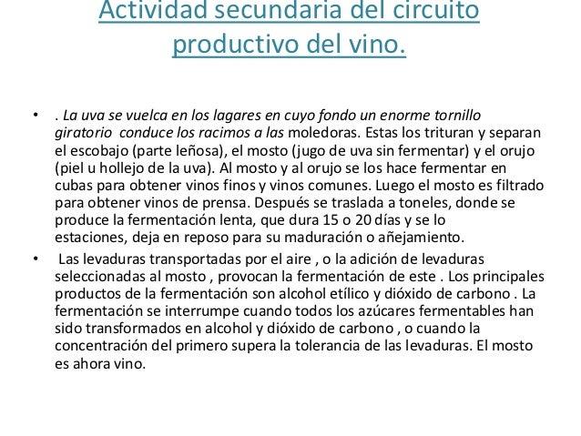 Circuito Productivo Del Vino : Circuitos productivos de la vid