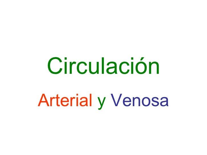 Circulación Arterial   y   Venosa