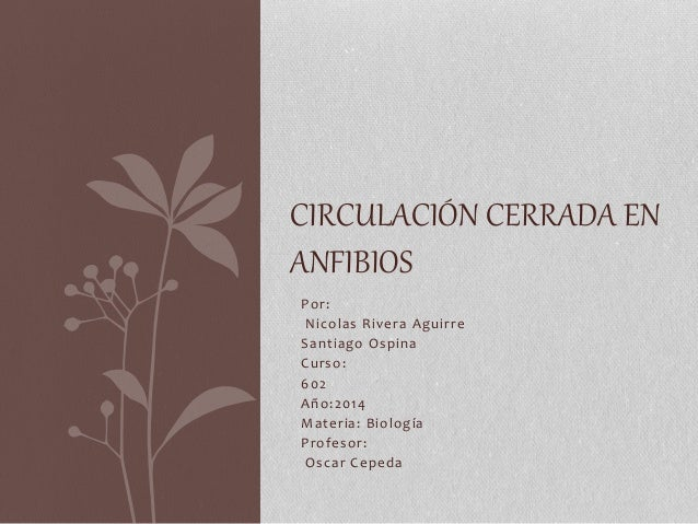 Por: Nicolas Rivera Aguirre Santiago Ospina Curso: 602 Año:2014 Materia: Biología Profesor: Oscar Cepeda CIRCULACIÓN CERRA...