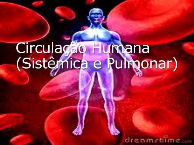 Circulação Humana (Sistêmica e Pulmonar)