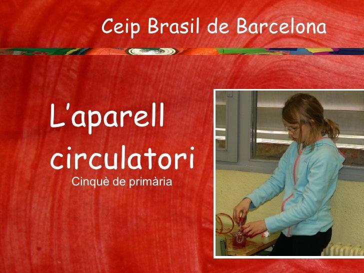 Ceip Brasil de Barcelona  Cinquè de primària L'aparell  circulatori