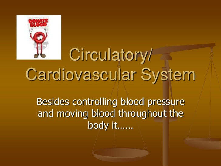 Circulatory/Cardiovascular System Besides controlling blood pressure and moving blood throughout the            body it……
