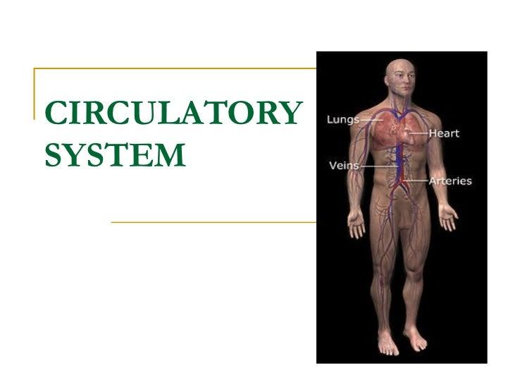 CIRCULATORYSYSTEM