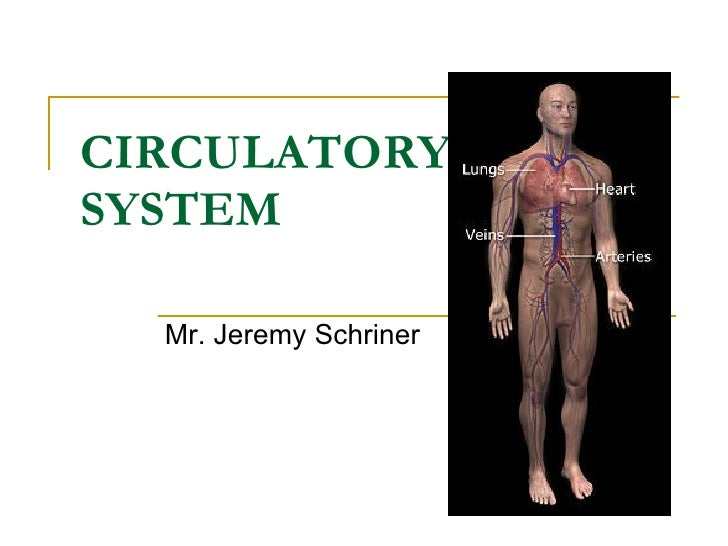 CIRCULATORY  SYSTEM   Mr. Jeremy Schriner