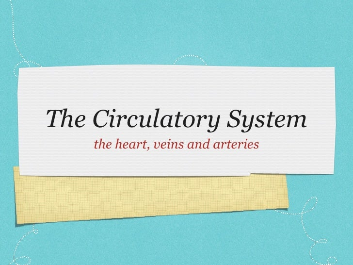 The Circulatory System <ul><li>the heart, veins and arteries </li></ul>