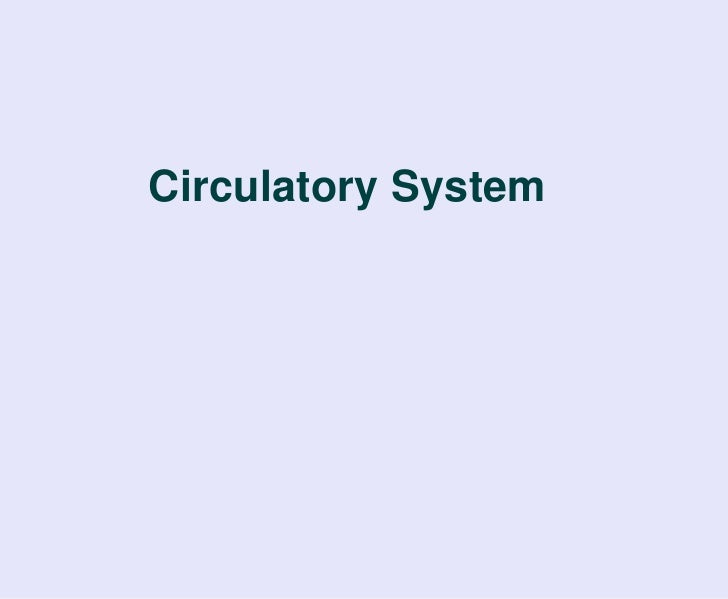 Circulatory System<br />