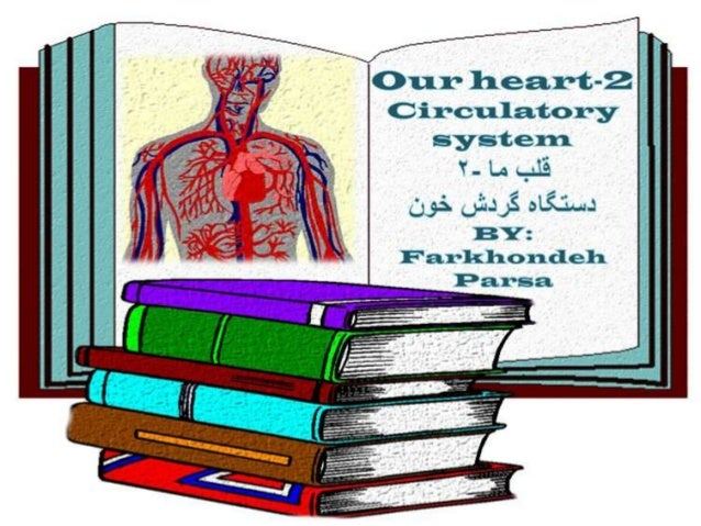 Circulatory system 2
