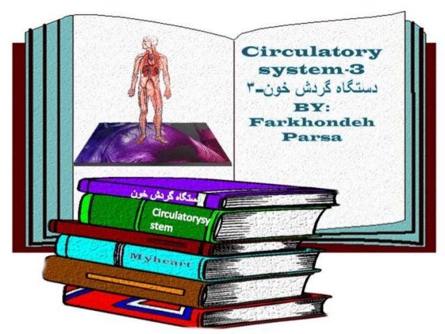 Circulatory system 3