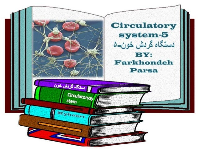 Circulatory system 5