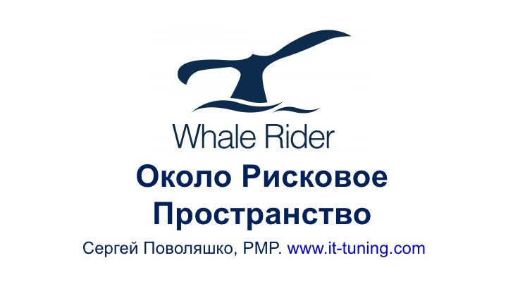 Circum Risk Space. Whale Rider Conference. Moscow