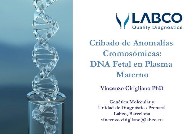 Diagnóstico prenatal no invasivo en sangre materna