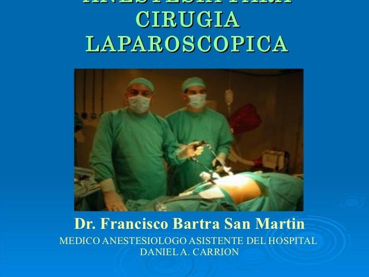 download bacteriocins of lactic
