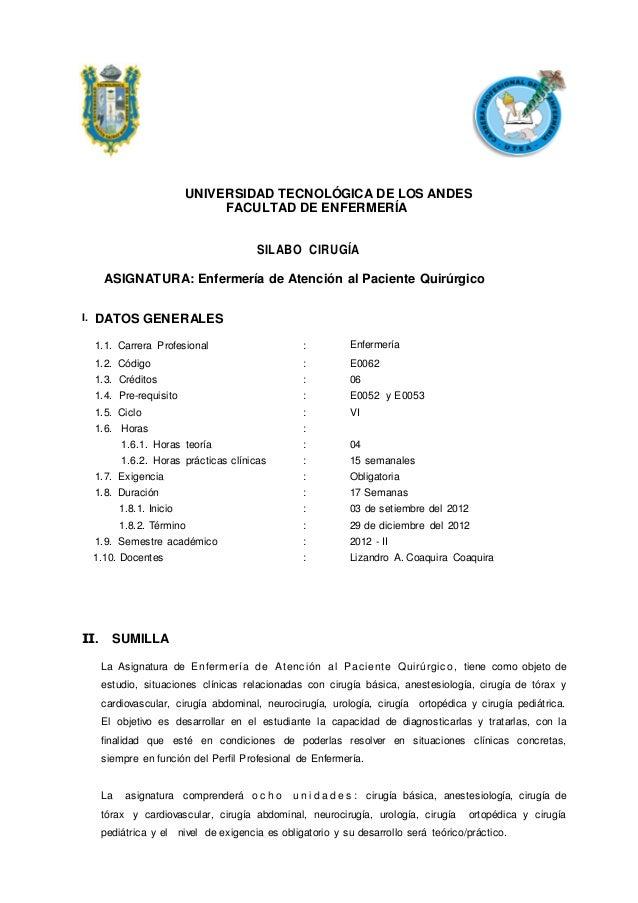 UNIVERSIDAD TECNOLÓGICA DE LOS ANDES                                FACULTAD DE ENFERMERÍA                                ...