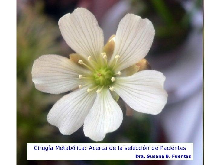 Cirugía Metabólica: Acerca de la selección de Pacientes Dra. Susana B. Fuentes